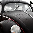 The Wet VW Beetle by jay007
