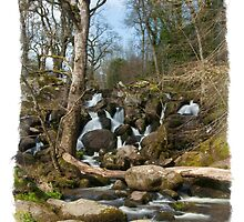 Becky Falls: Dartmoor Devon, UK. by DonDavisUK
