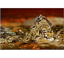 Bubbling Over Photographic Print