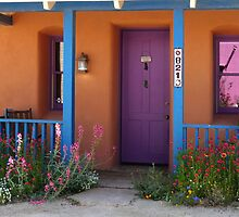 Purple Door by Lucinda Walter
