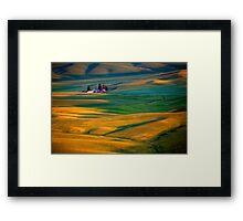 Golden Palouse Framed Print