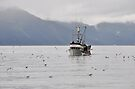Over Cast - Seward AK by Barbara Burkhardt