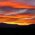 Hawthorne Sunset by Mikhail Lenitsyn