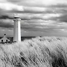Walney Island Lighthouse by SteveMG
