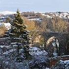 Tavistock kissed with snow by Carl Bassett
