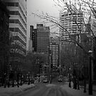 Cityscapes - The Cold Took Over the City by ShadowDancer