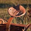 Rusting in Peace in the Texas Hill Country by Robert Kelch, M.D.
