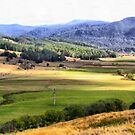 Gunns Plains  by Elaine Game