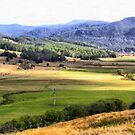 Gunns Plains  by Elaine Game