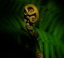 Earths Child by Linda Cutche