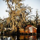 Swamp Shack by RayDevlin