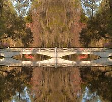 Dreamland - Magnolia Plantation and Gardens by JHRphotoART