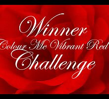 Colour Me Vibrant Red Challenge Winner Banner by Aimee-Ellen