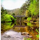 Alma Bridge in Tasmania by Elaine Game