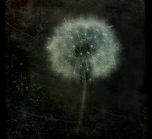 Moonlit Dandelion  by gothicolors