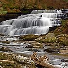 Beecher Creek Falls by Jeannette Sheehy