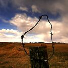 Ominous Prairie Skies by Larry Trupp