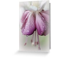Before The Last Teardrop Falls.... Greeting Card
