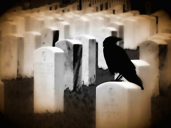 Nevermore by shutterbug2010
