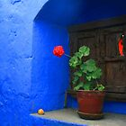 Blue Wall - Arequipa, Peru by David McGilchrist