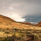 Damaraland | Namibia by Olwen Evans