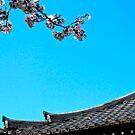 Tokyo - Cherry Blossoms (Sakura) by russtokyo