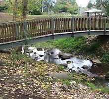 Water Under The Bridge by ScenerybyDesign