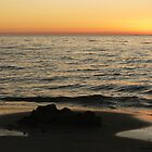 Waiting for the Sunset, Coogee Beach by apricotargante