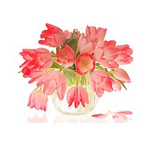 Pink Tulips in Vase Photographic Print