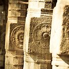 Rock Columns at Ridi Vihara by Chaminda Subasinghe