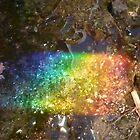 Rainbow trash by Ecohippy