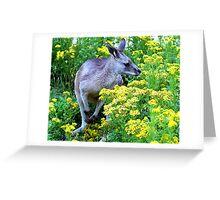 Grey On Yellow Greeting Card