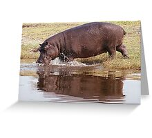 Charging Hippo Greeting Card
