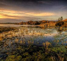 Long Slow Sunset by Bob Larson