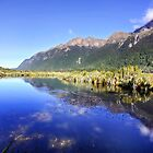 Mirror Lakes, New Zealand by Wendy  Meder