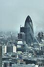 The Gherkin, London, England - HDR by Allen Lucas