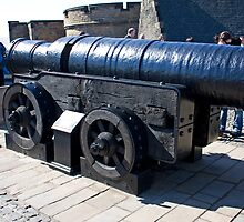 Mons Meg by Tom Gomez