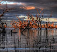 Lake Pamamaroo by Rod Wilkinson
