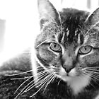 Mia - Black and White portrait by Sophie MacLeod