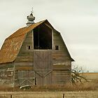 Tilted Weather Vein BARN by kodakcameragirl