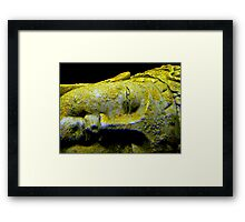 a breath away from divinity Framed Print
