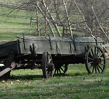 Old Wagon on the Farm by Laurel Haarer