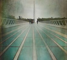 Crossing by Laurie Search