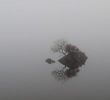 Misted Tarn by mikebov