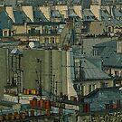Paris Rooftops by DExPIX