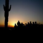 People Cactus by Erika Townsley