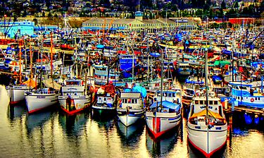 Fishermans Terminal ~ HDR Series ~ Seattle, WA by lanebrain photography