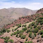 Atlas Mountains 2 by rhallam