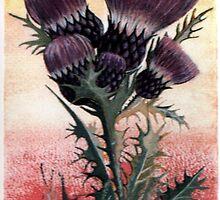 the flower of scotland by james thomas richardson