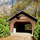 Thomas J. Malone Covered Bridge by Monnie Ryan